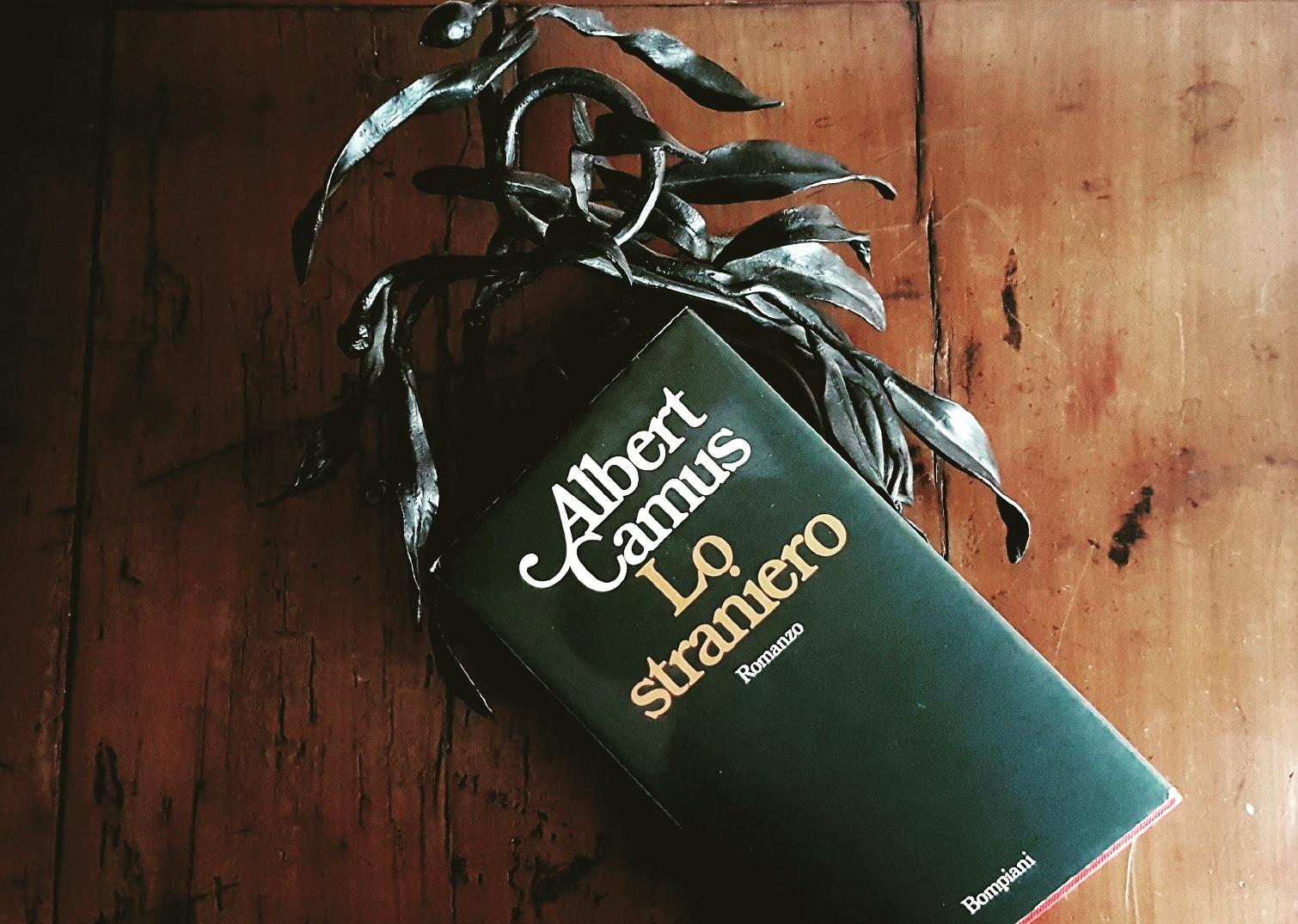 Albert-Camus-lo-straniero-451F